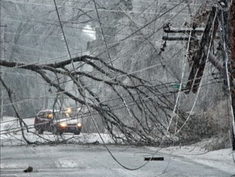 Fallen trees and powerlines covered in ice