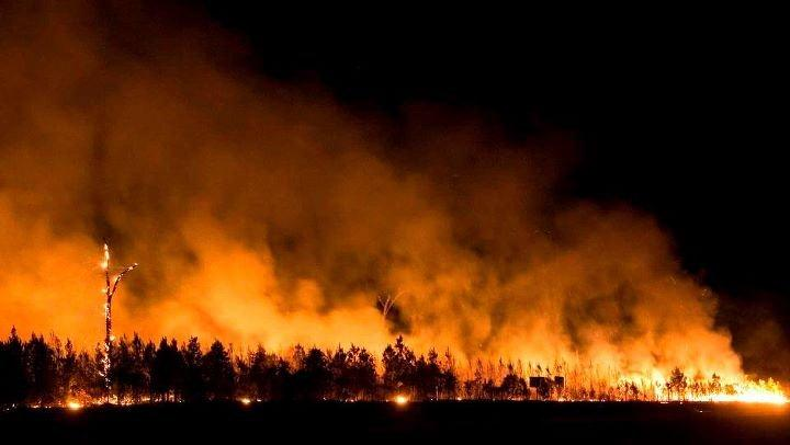 Picture of the large fire consuming trees.